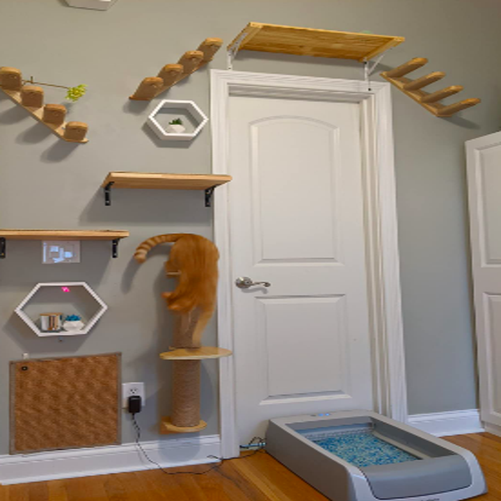 Reviewer image of cat room with climbing shelves and the litter box on the floor
