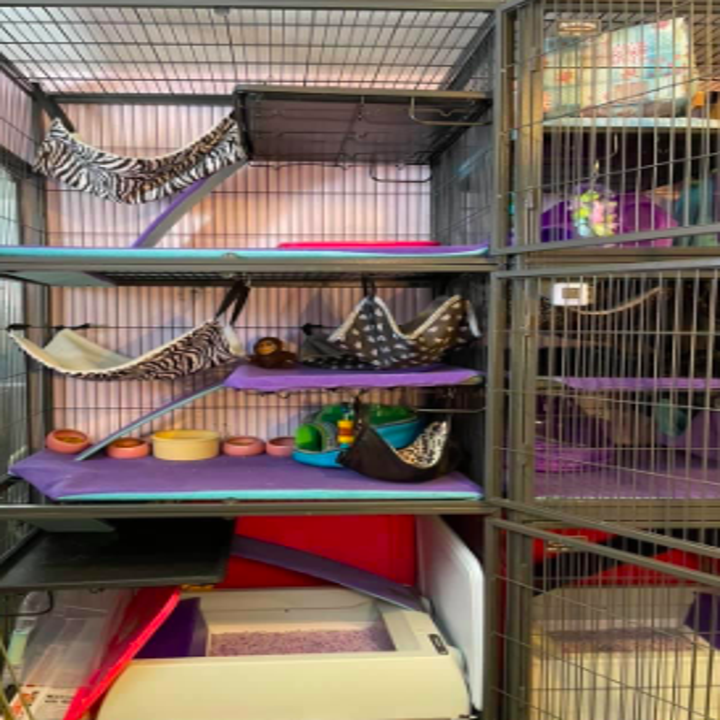 Four-tier ferret enclosure with litter box on the bottom shelf