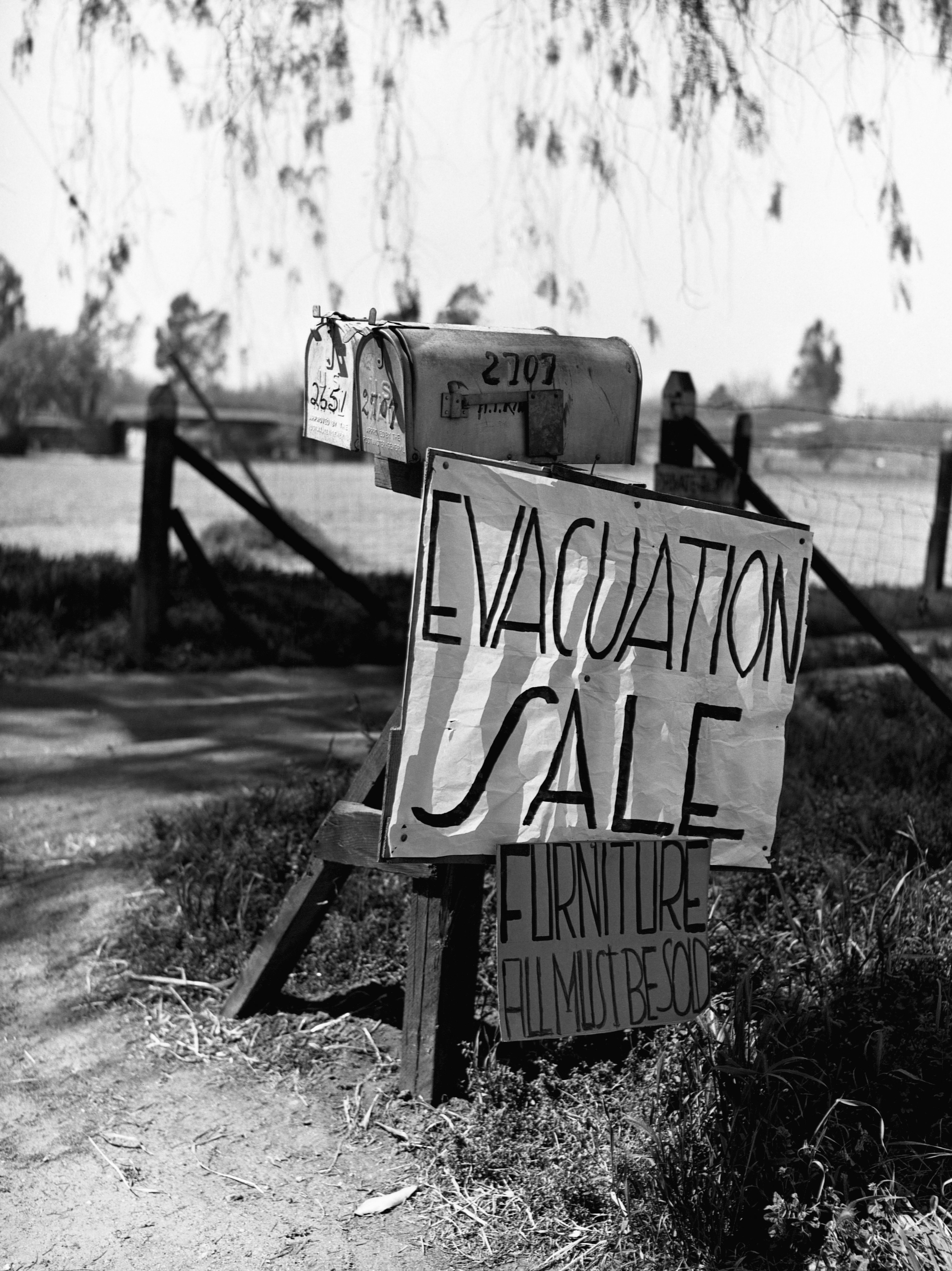 """A sign reading """"Evacuation sale, furniture all must be sold"""" nailed to a mail box"""