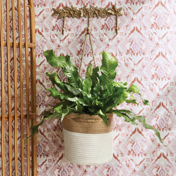 brown and white coiled rope basket hanging from a hook, with a plant inside