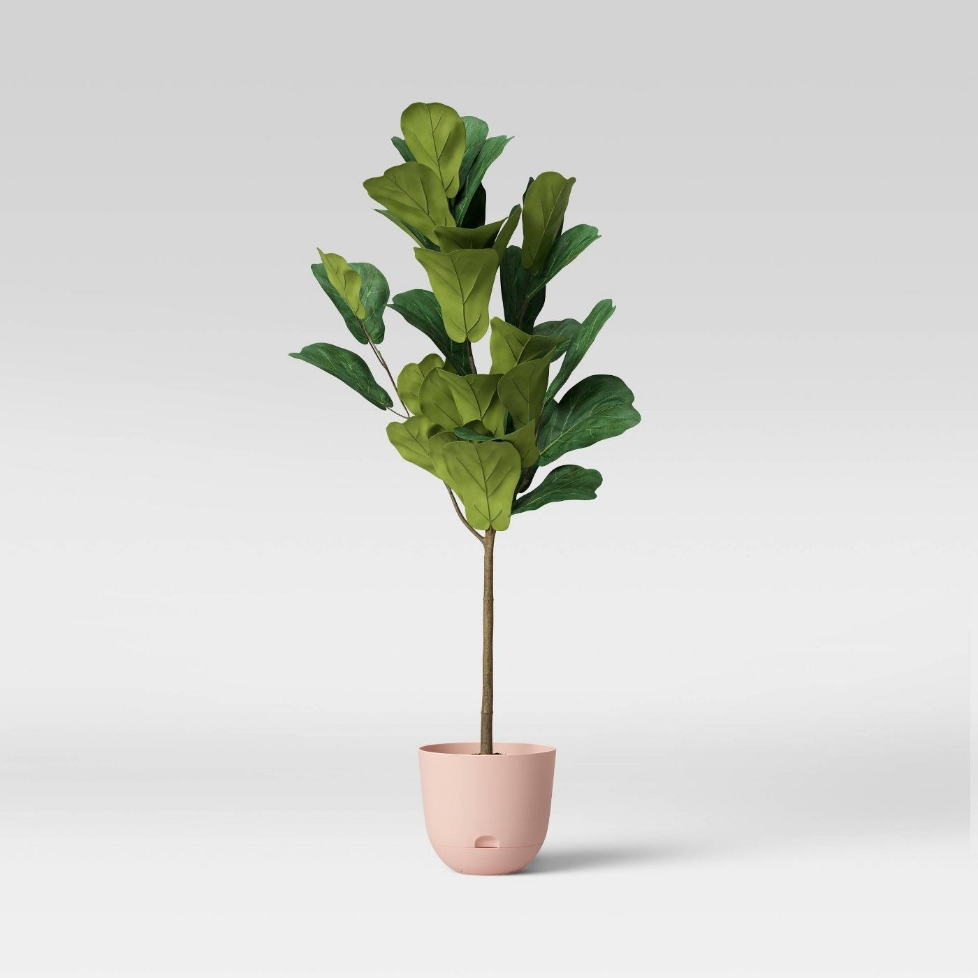 peach blush self-watering planter with green-leafed plant