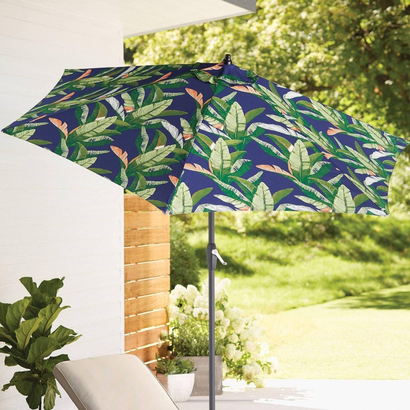 blue, green, and coral umbrella