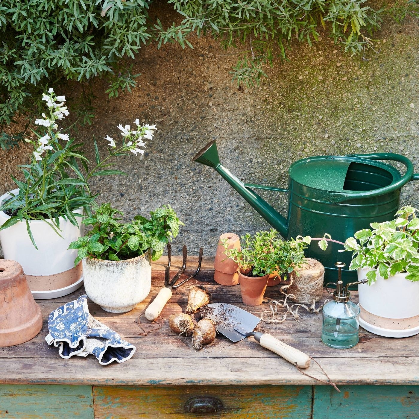 Green watering can on a gardening table
