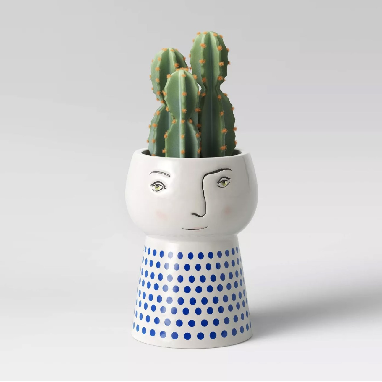 Planter with cactus in it