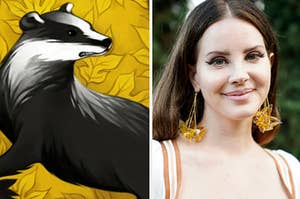 A Hufflepuff logo is on the left with Lana Del Rey on the right