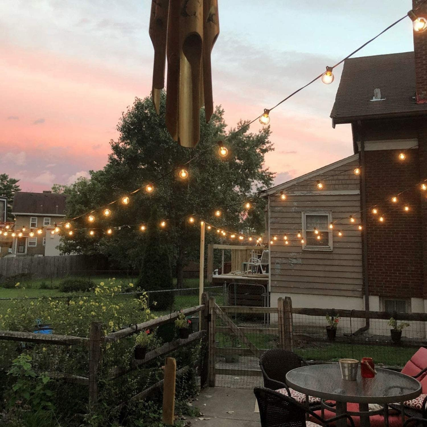 The stringed lights hanging in a backyard