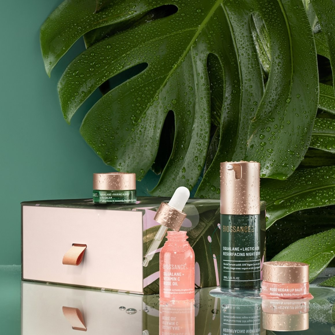 the four products on a counter, in front of a green leaf