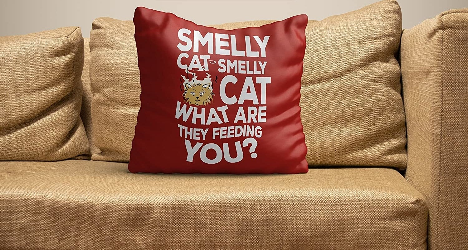 """A red cushion with the words """"Smelly cat, smelly cat, what are they feeding you?"""""""