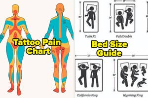 Tattoo Pain Chart and a Bed Size Guide