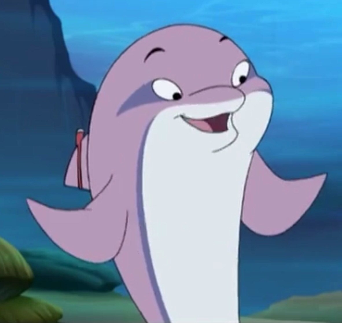 Ultra the dolphin smiling