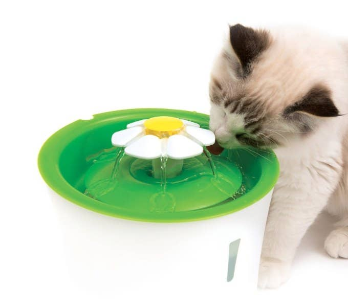a cat drinking from the flower cat drinking water fountain in white and green