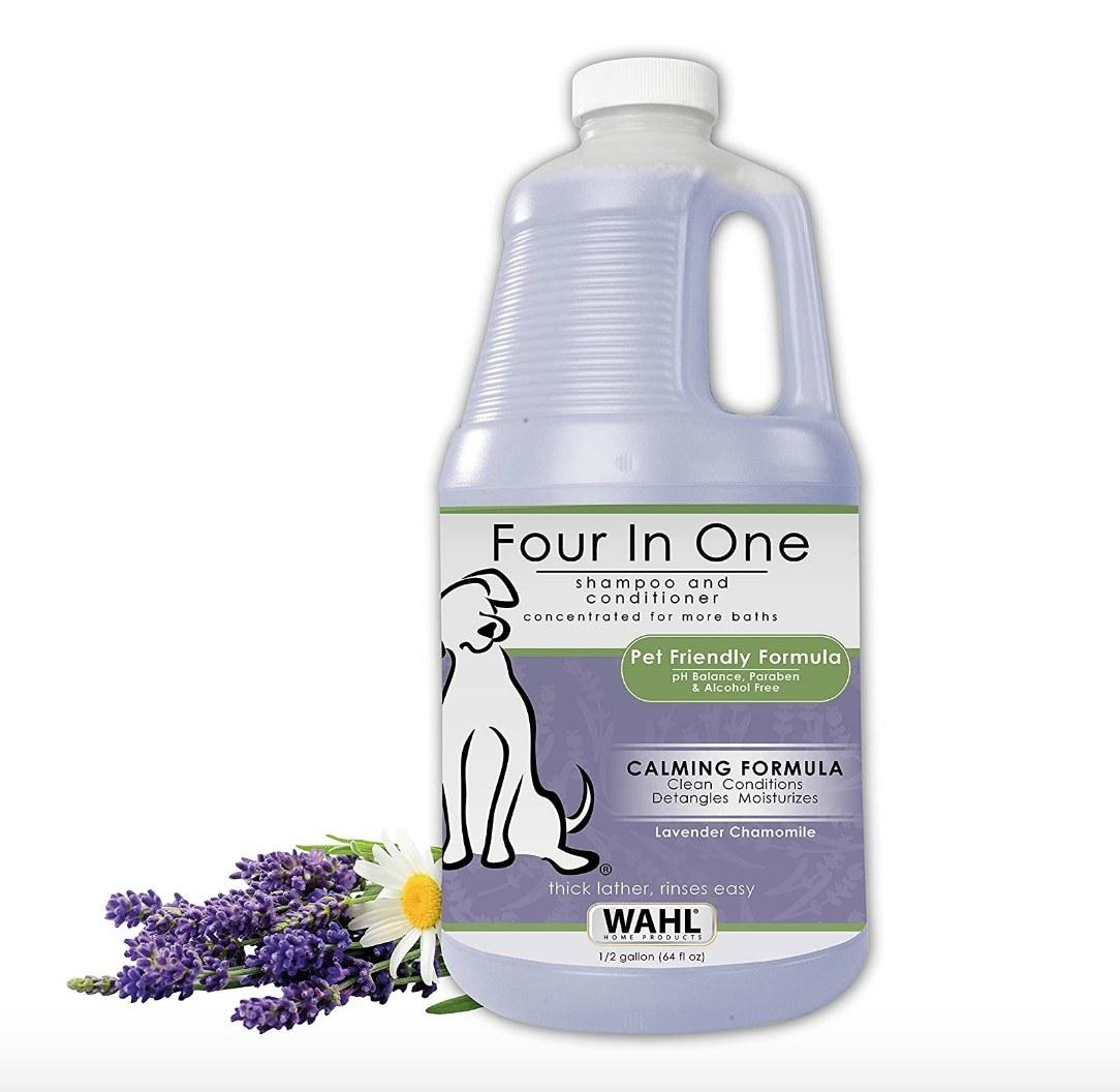 4-in-1 lavender shampoo