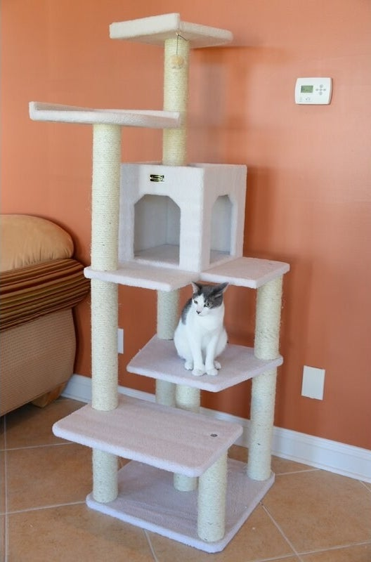 A five-level, 68-inch cat tree that cats can use for playing, climbing, and resting