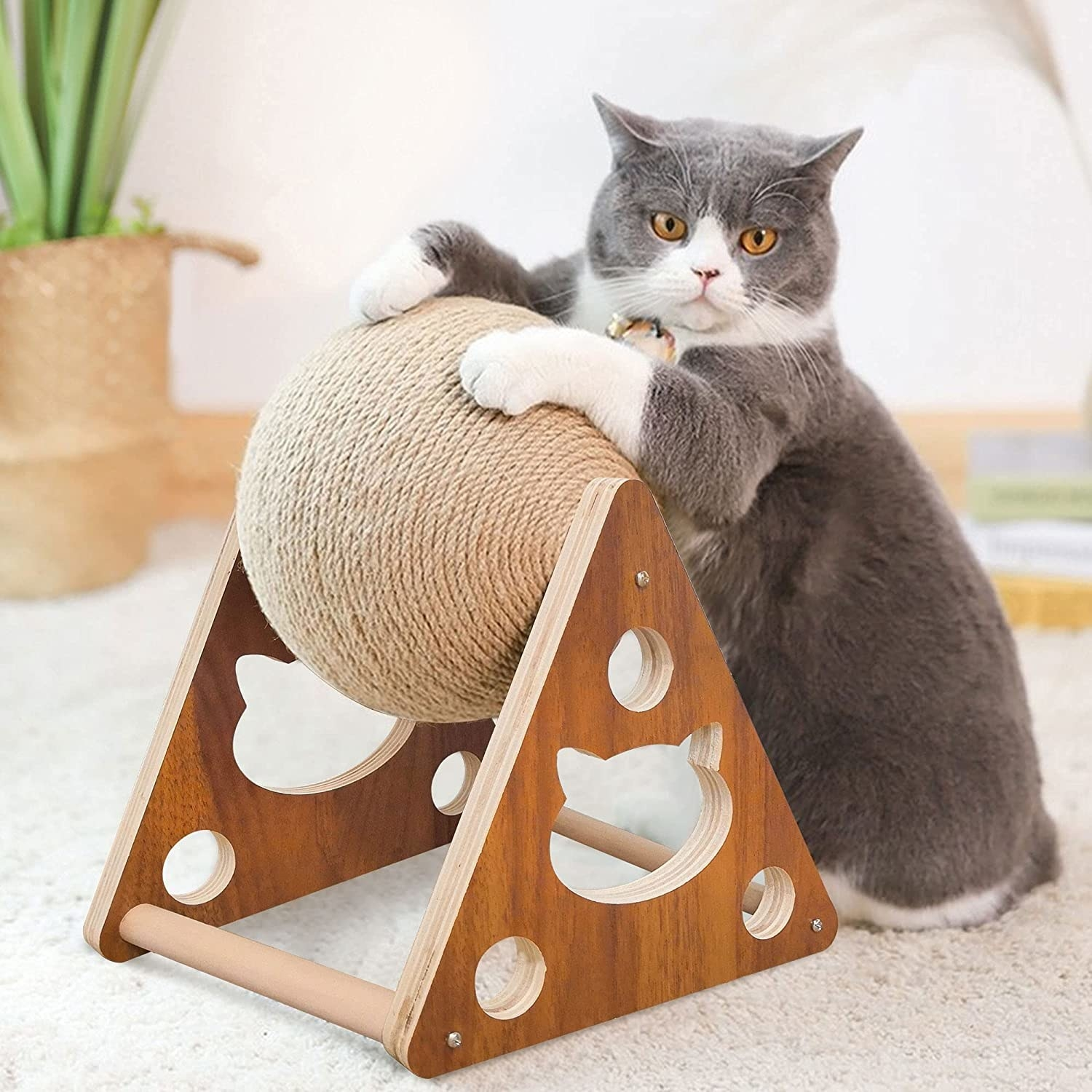 a cat playing with the sisal scratcher ball