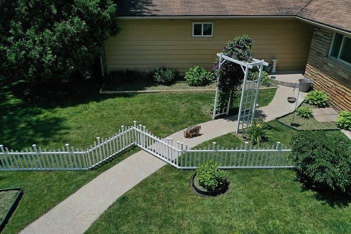 the fence around a backyard