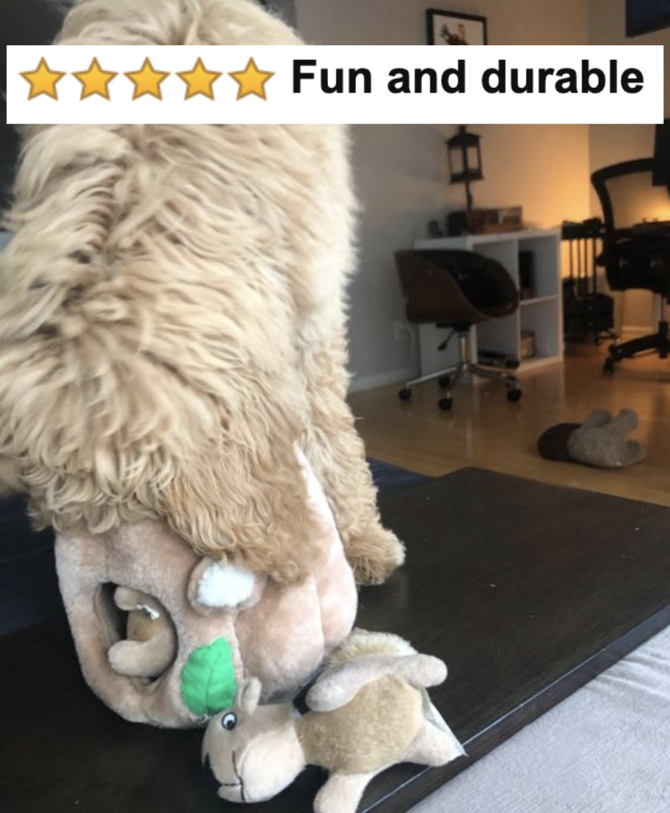 Reviewer's dog sticking its head in the toy and chewing it