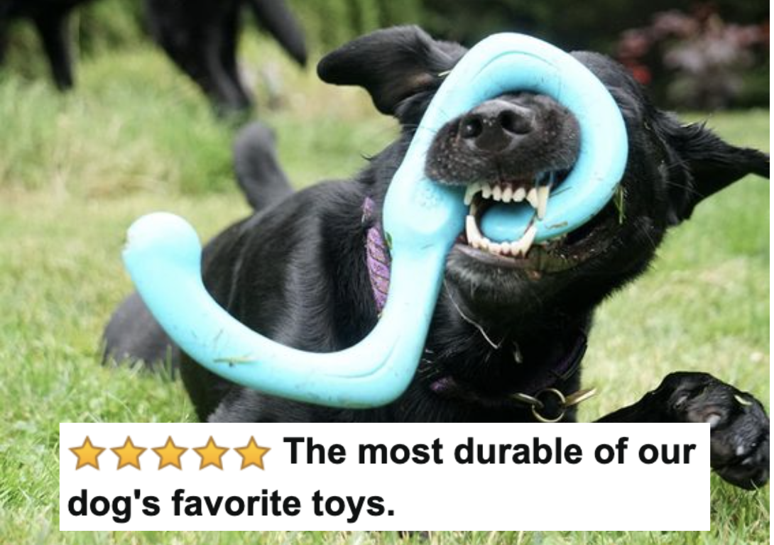 """Reviewer's dog chewing aggressively on the toy with five-star caption """"the most durable of our dog's favorite toys"""""""