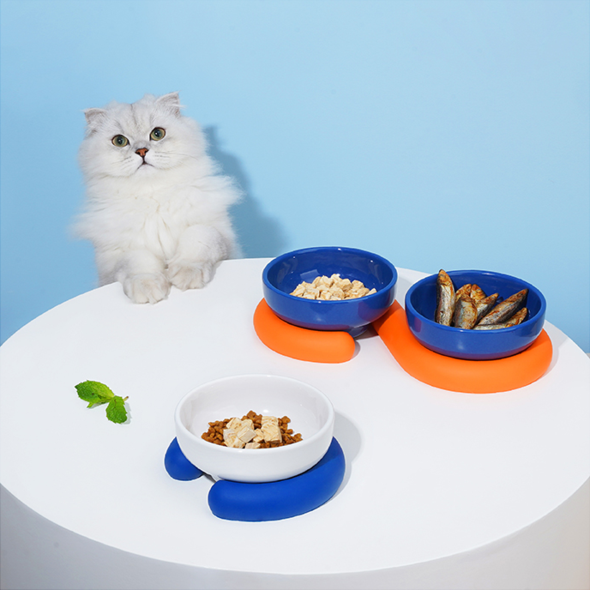 cat poses with bowls supported with tube like bases in bright colors