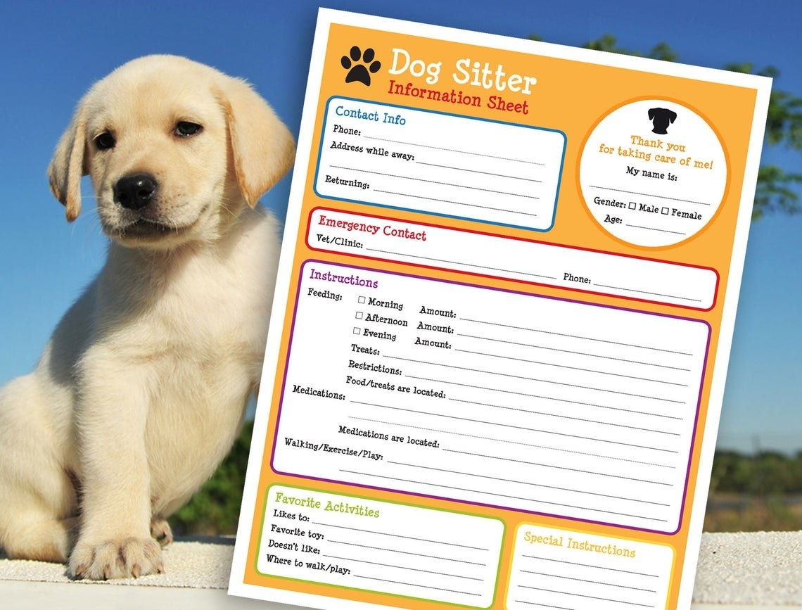 notepad with spaces for all sorts of information for the sitter like emergency contact, favorite activities, and instructions