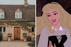 a cottage covered in vines on the left and aurora from sleeping beauty on the right