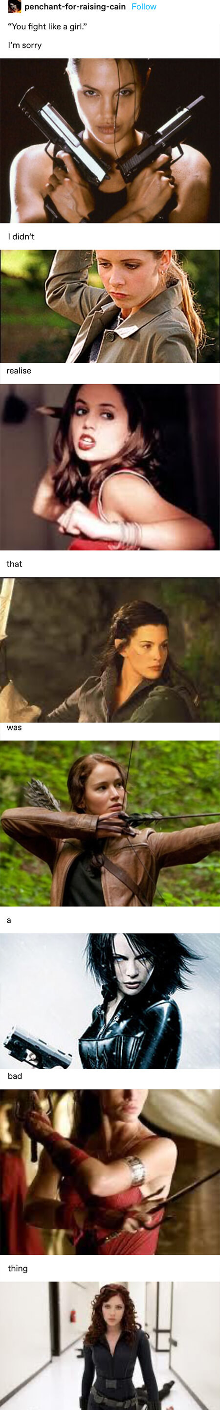 """""""you fight like a girl"""" and """"I'm sorry, i didn't realize that was a bad thing"""" with a ton of pictures of fictional female fighters/warriors"""