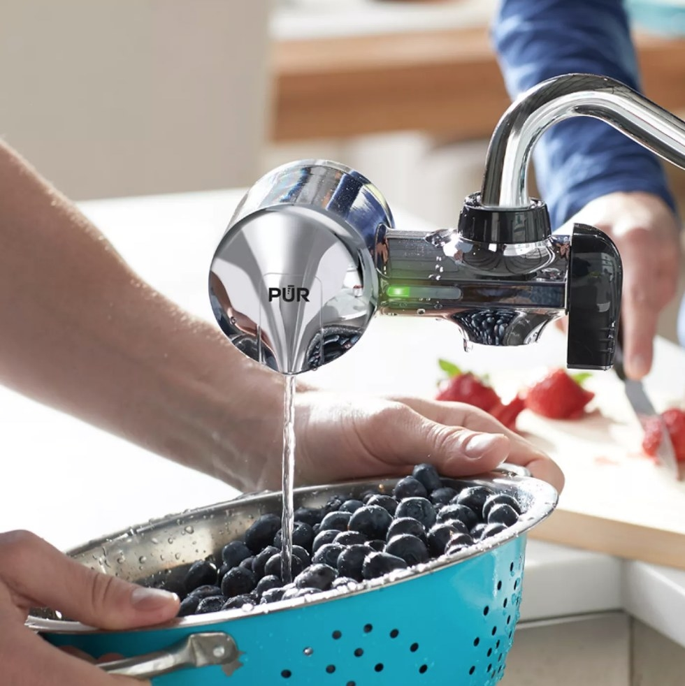 PUR faucet filter on faucet washing blueberries