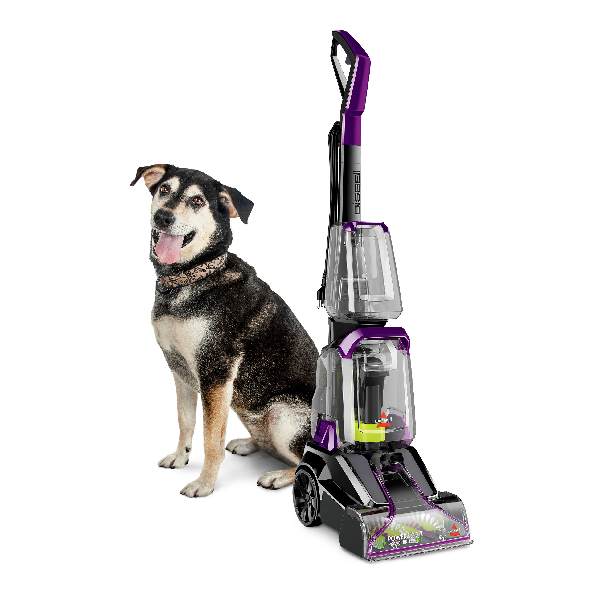 The pet carpet washer shown next to smiling medium-sized brown and white dog