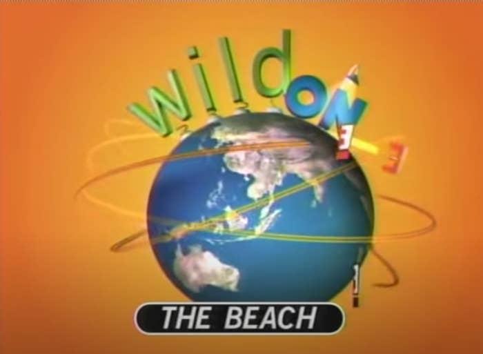 Screenshot of Wild on The Beach logo