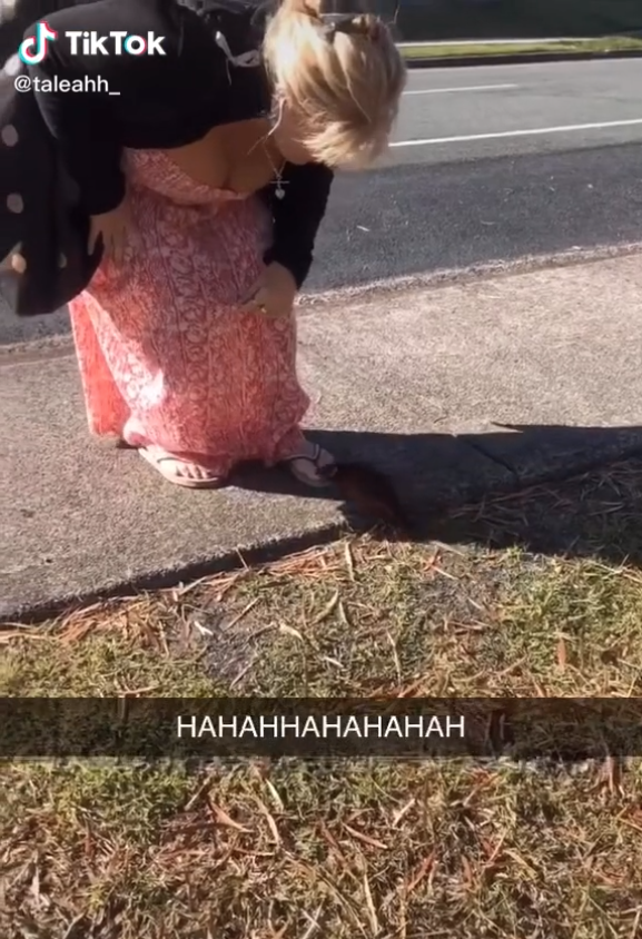A woman leaning down towards a possum