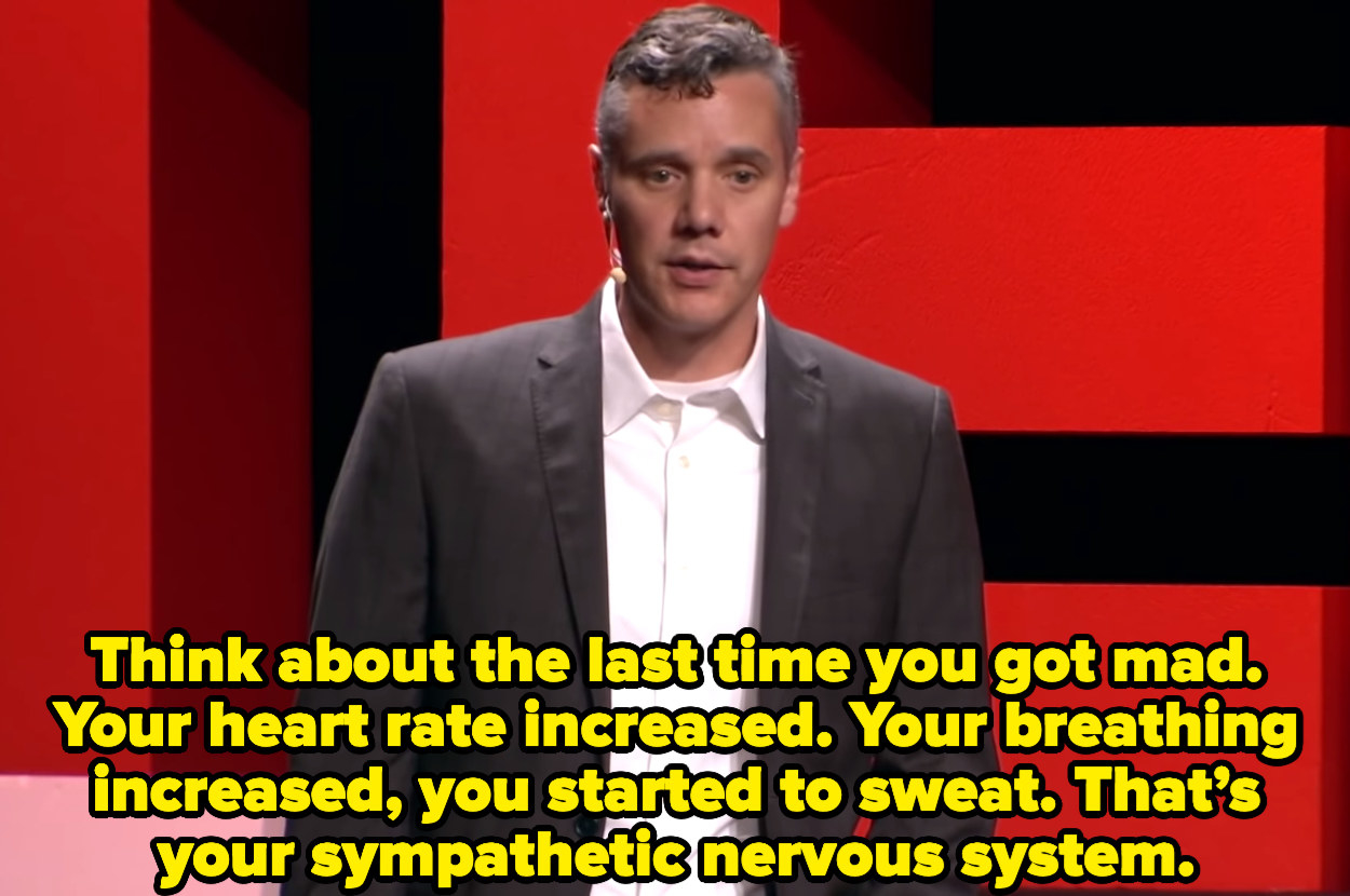 """At a Ted Talk, Ryan says, """"Think about the last time you got mad. Your heart rate increased. Your breathing increased, you started to sweat. That's your sympathetic nervous system."""""""