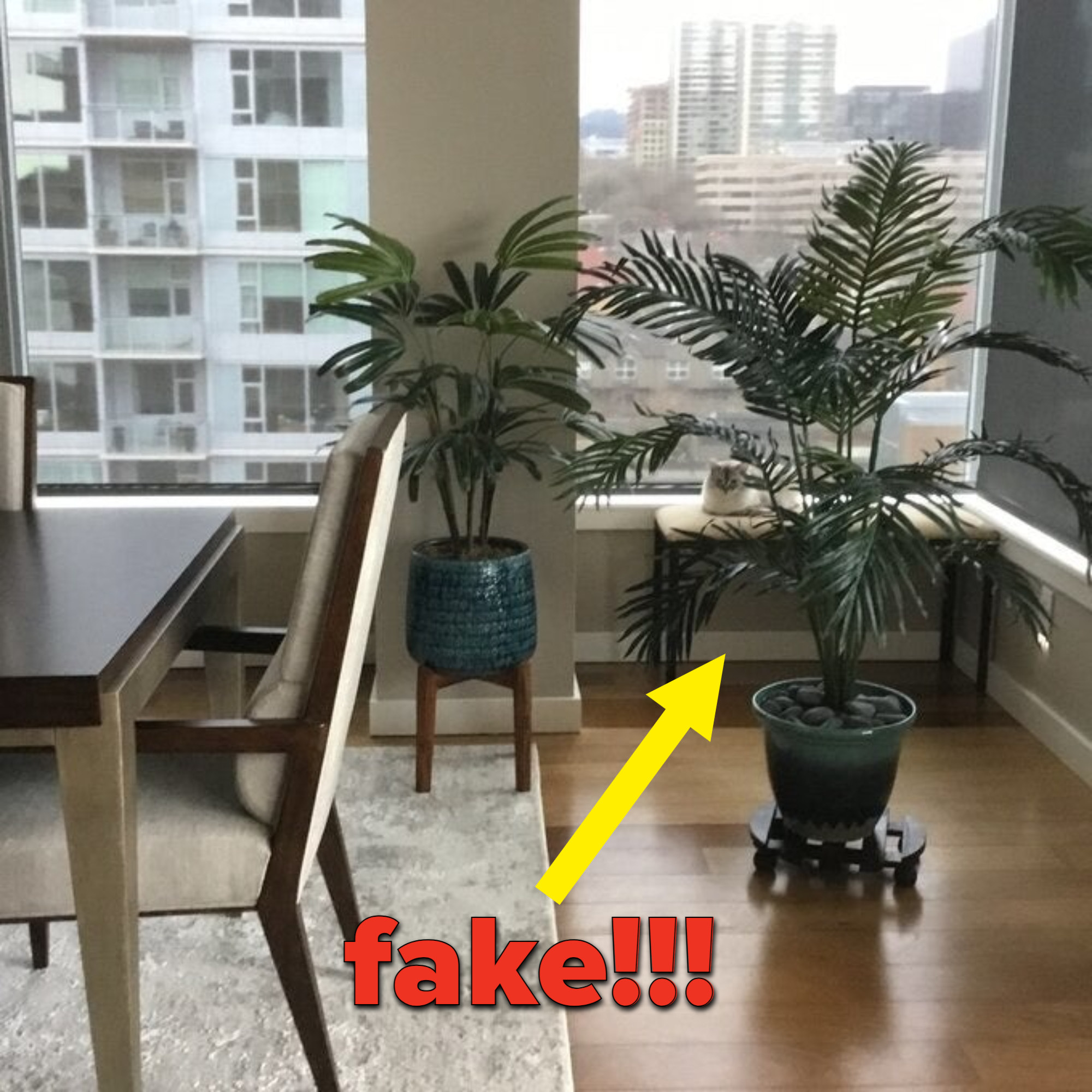 a reviewer's photo of the fake plant in their home