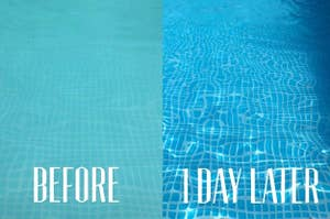 reviewer before and after images of a pool: before, the water is green-ish and cloudy; after, the water is crystal clear