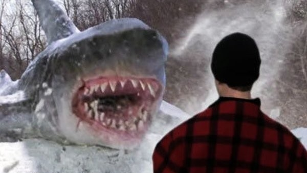Shark and man in snow