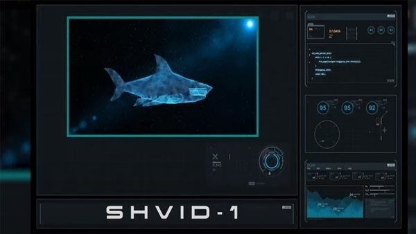a computer screen showing a shark swimming underwater