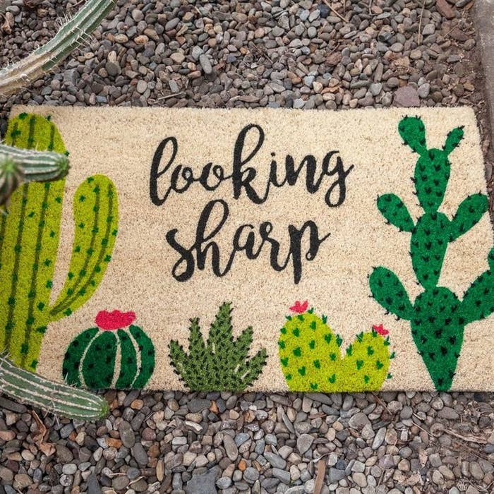 the welcome mat that reads looking sharp and has different cactuses on it