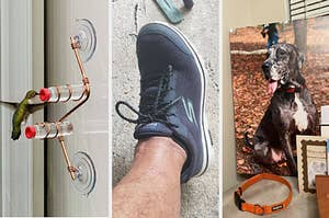 three panels showing a window-mounted hummingbird feeder, a reviewer wearing a sneaker, a canvas photo print of a dog