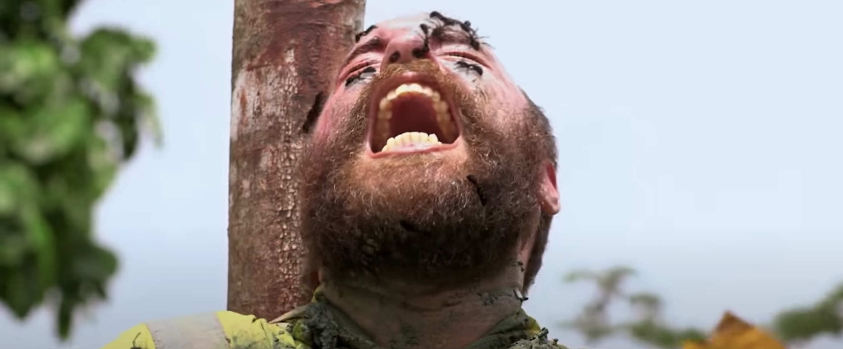a man with ants eating at his face as he screams in pain