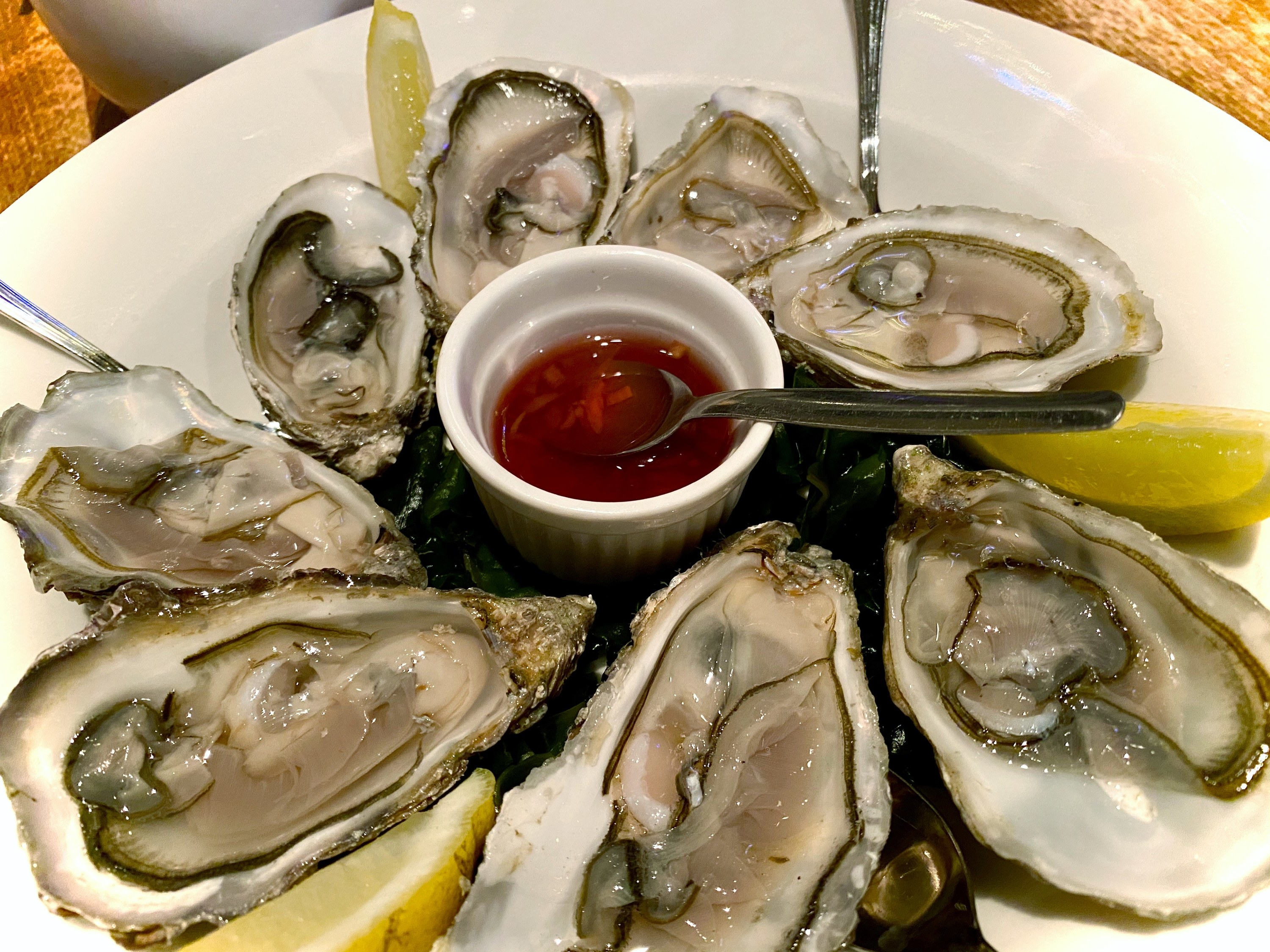 Eight fresh raw oysters are served on a white plate with lemons and sauce
