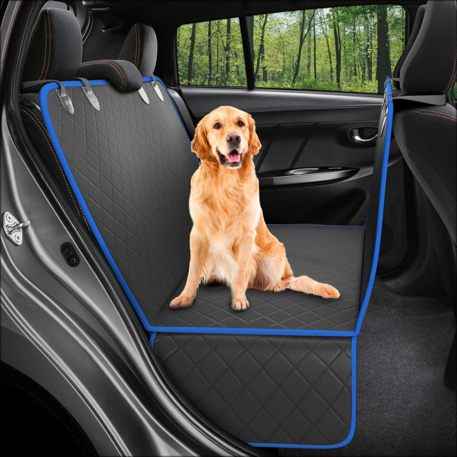 Dog on seat protector in back of car