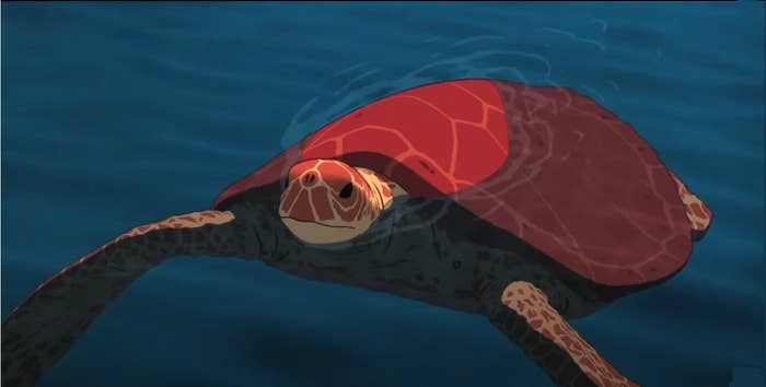 A red colored turtle in the ocean