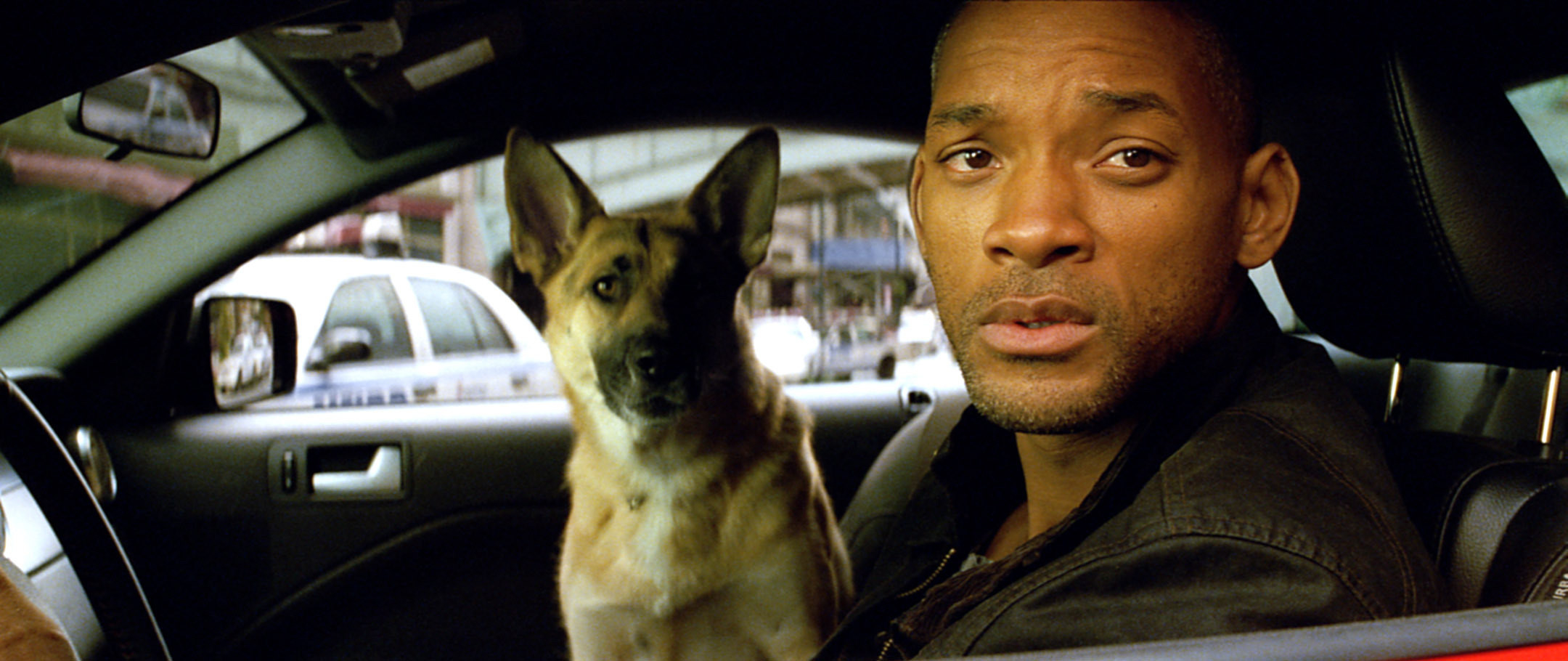 Will Smith and his dog in a car