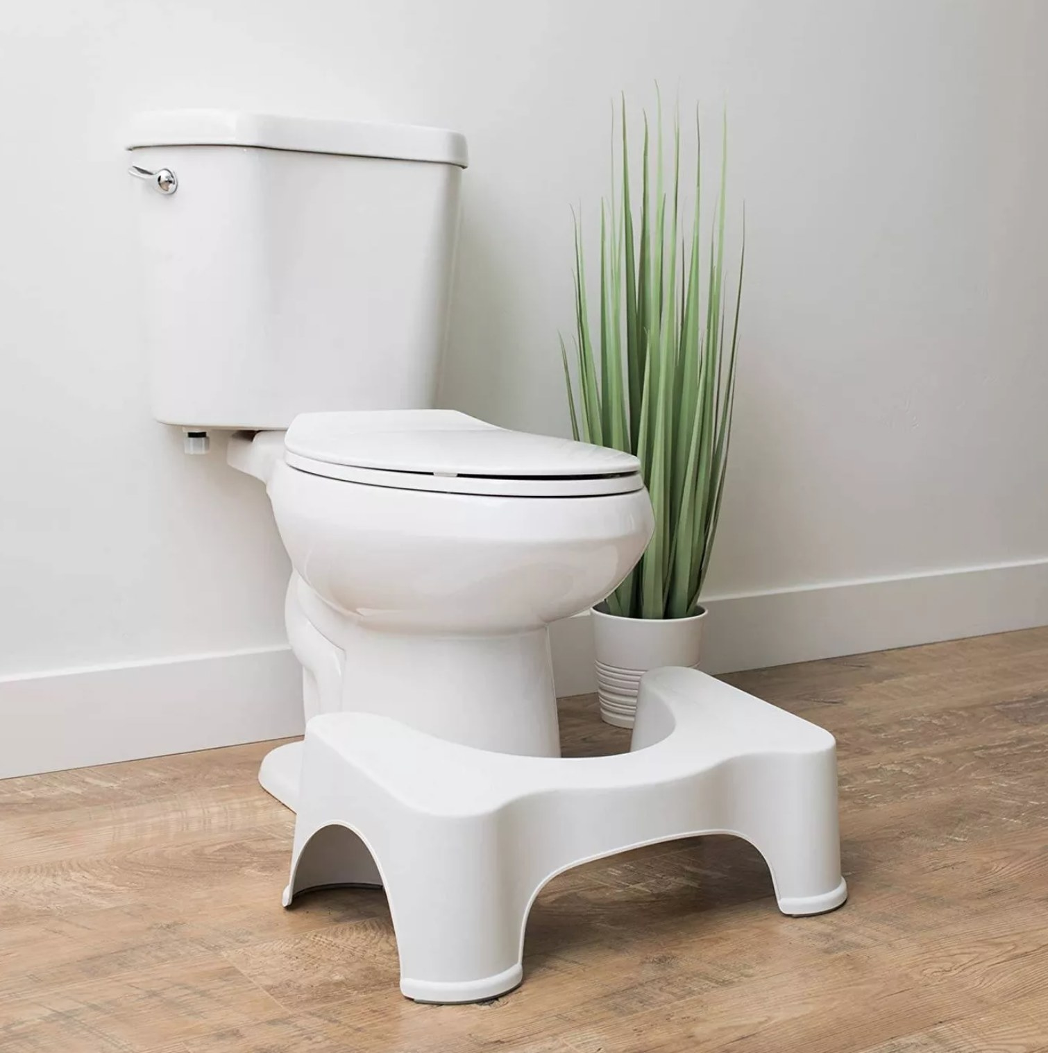 the squatty potty next to a toilet with a plant