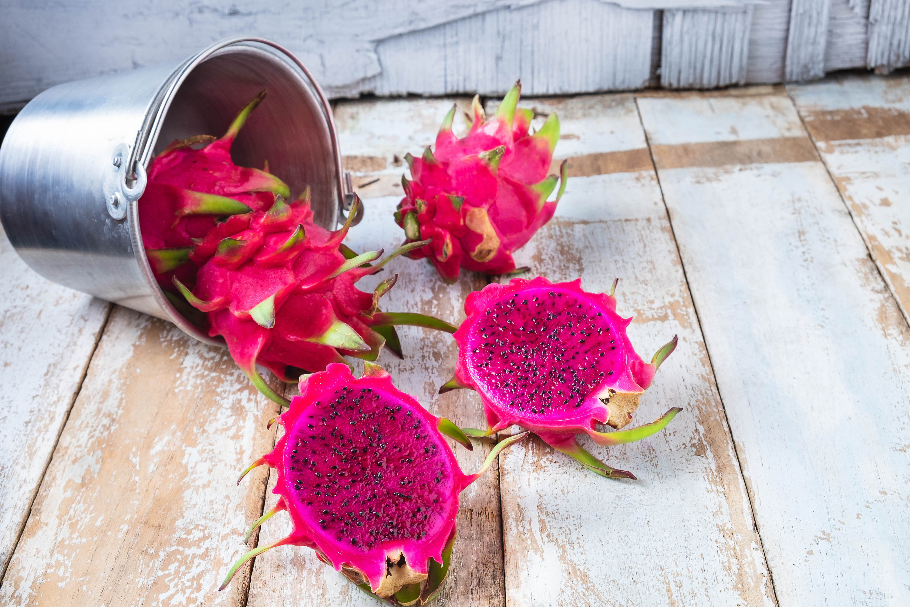 One dragon fruit is in a metal bucket tilted to the side. Two dragon fruits are on wood, and one dragon fruit that has been cut in half is also on the wood