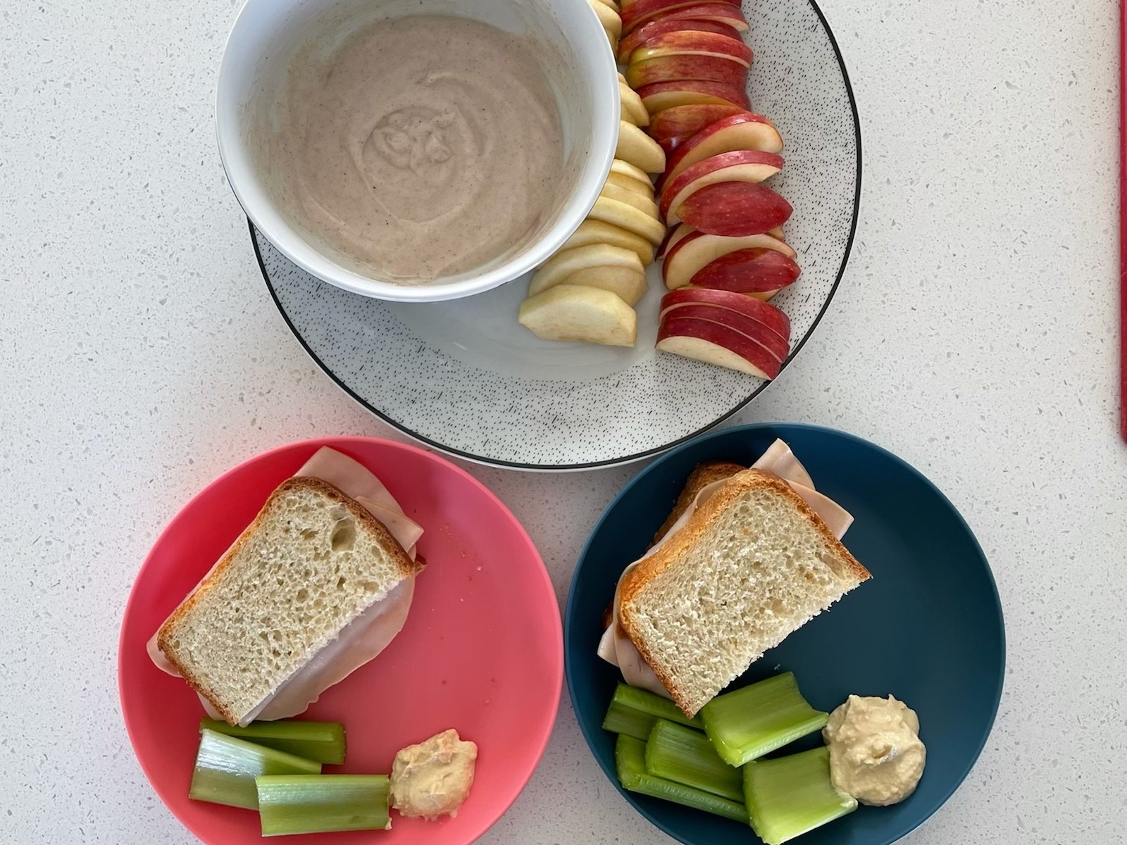 Turkey sandwiches plated with veggies and hummus