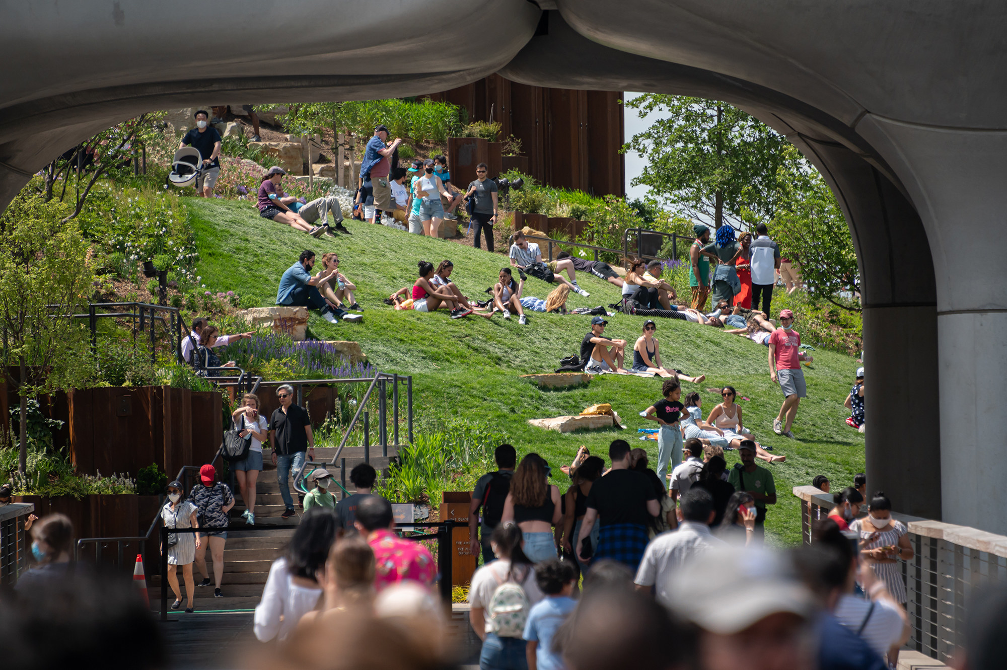 A view of people lounging on the grass and walking under an overpass
