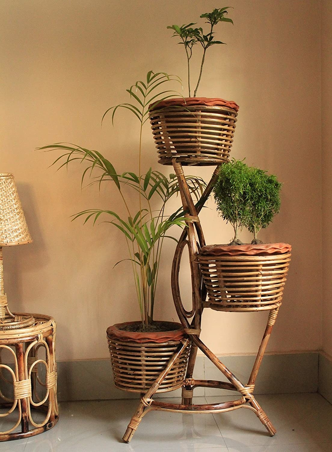A cane planter stand holding 3 potted plants.