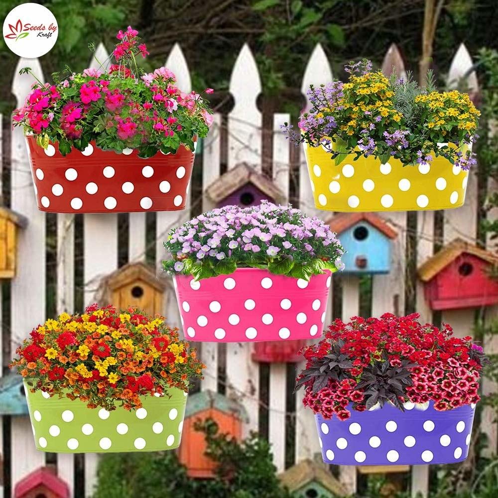5 colourful hanging polka dot planters.