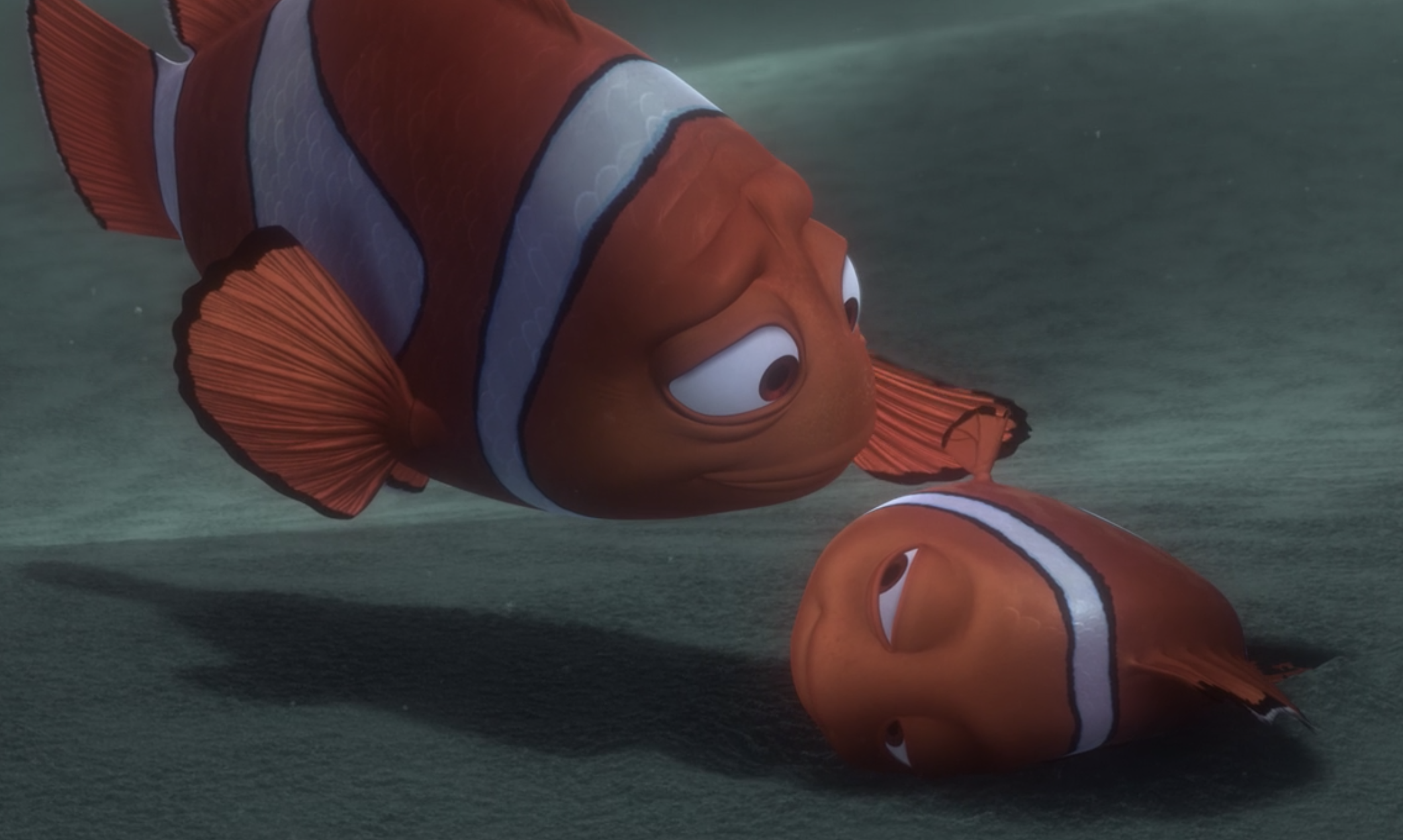 Marlin gently touches Nemo's fin as he lies on the ground