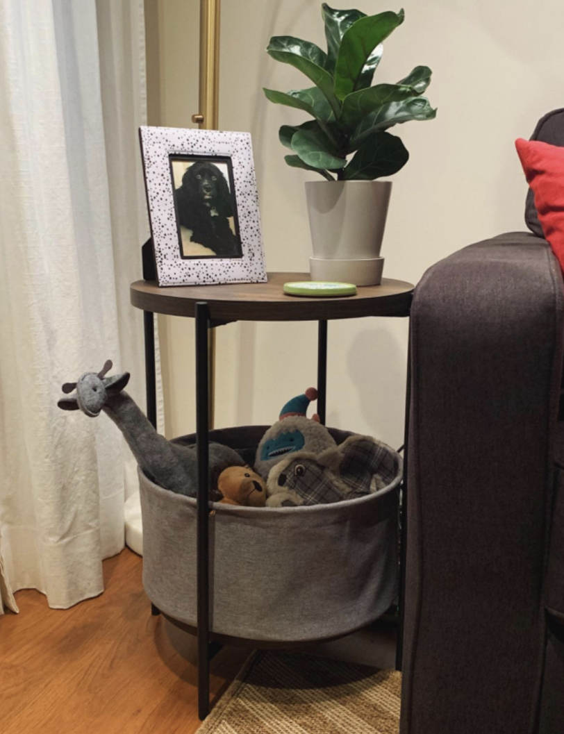 Reviewer's table holds toys on bottom shelf and displays a photo and a plant on the top shelf