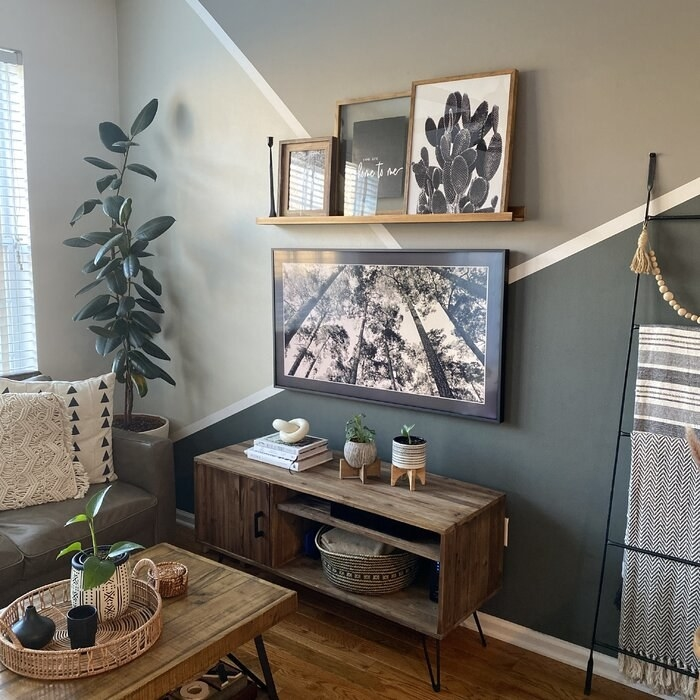 The TV stand in a living room with plants on top
